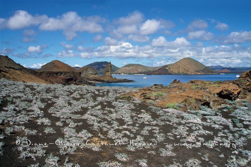 paysage volcanique - ïle de Bartholome, Galapagos