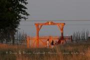 Porte d'entrée  du Parc de Dyrehaven