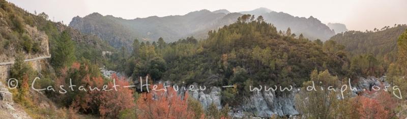 IMG_5168-Panorama.jpg