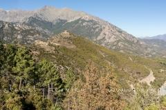 IMG_4421-Panorama.jpg