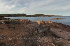 IMG_4725-Panorama.jpg