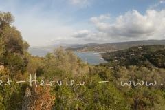 IMG_5391-Panorama.jpg