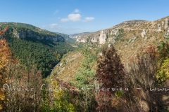 _MG_3285-Panorama