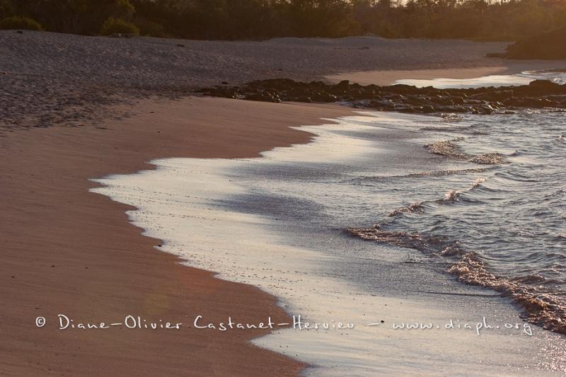 Plage de Bachas - Galapagos
