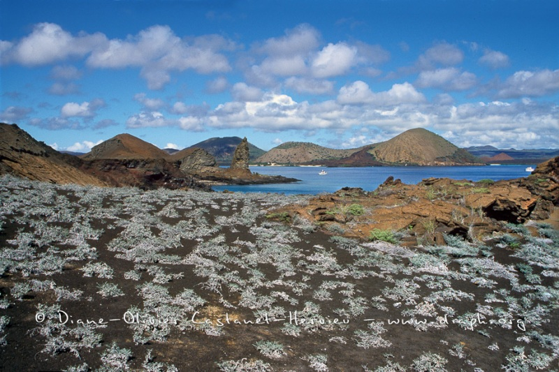 paysage volcanique - ïle de Bartholome, Galapagos