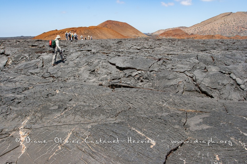 Coulées de lave, île de Santiago, Bahia Sullivan - îles Galapagos
