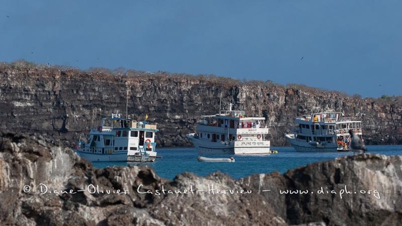 Bateau de croisière aux Galapagos - île de Génovesa