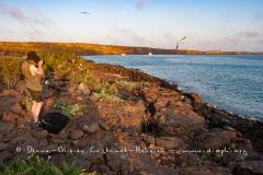 Paysage île de Génovesa, îles Galapagos